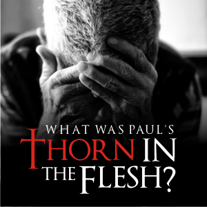 thorn in paul s flesh Tom wheeler frontline • november/december 2008 2 cor 12:7–10 christians for a long time have speculated about the identity of paul's thorn in flesh it is interesting to consider what paul.