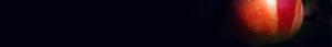 illuminare bnner
